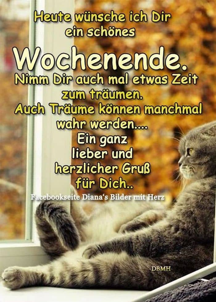 Whatsapp Bilder Lustig