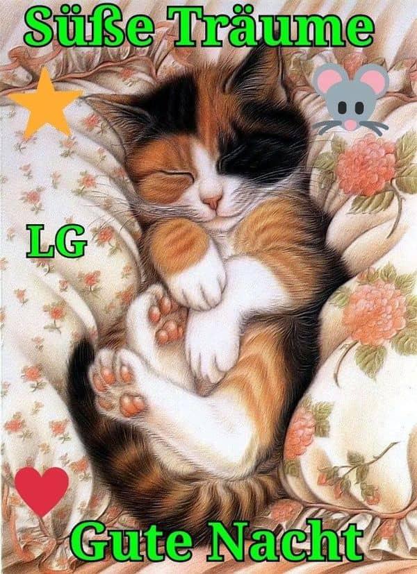 Süße gute nacht sprüche für freunde